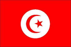 vous expliquer le dialecte tunisien