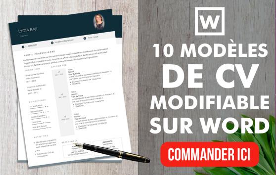 je vais fournir 10 model u00e9s de cv moderne modifiable sur word pour 5