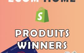 Je Vais Vous Trouver 10 Produits Winners Pour Votre Boutique 5 EUR
